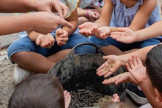 Niños sentados alrededor del cubo, en la foto solo se le ven las manos, donde manosean pienso de caballo.
