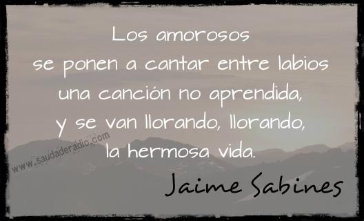 """""""Los amorosos se ponen a cantar entre labios  una canción no aprendida,  y se van llorando, llorando,  la hermosa vida."""" Jaime Sabines"""