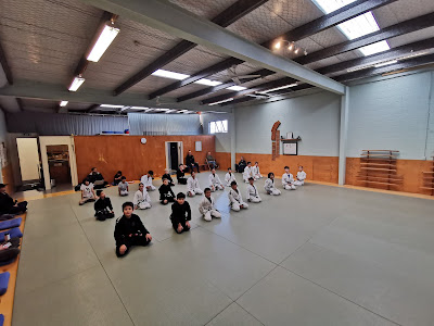 Auckland Kids BJJ Senior Team