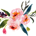 Water Colour Flower PNG 18