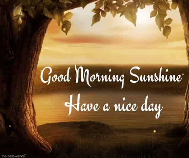 images of good morning sunshine have a nice day