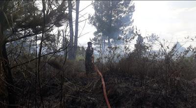 Lahan Kosong Milik Adat Terbakar Koramil 04 /PRG Kodim 0119 Bantu Padamkan Api