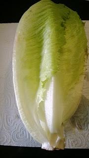 Sala Rice ist eine Kreuzung zwischen Eisbergsalat und Römersalat