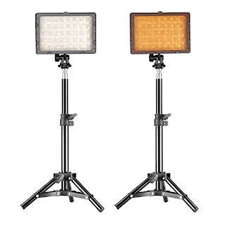 "Neewer Photography 160 LED Studio Lighting Kit, including (2)CN-160 Dimmable Ultra High Power Panel Digital Camera DSLR Camcorder LED Video Light (2)32"" / 80cm Tall Studio Light Stand"