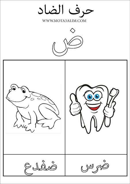 كتاب تلوين الحروف العربية pdf