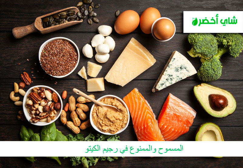 ما هى الأطعمة المسموحة والممنوعة فى الكيتو دايت ملف كامل عن أطعمة الكيتو دايت
