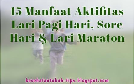 Manfaat Aktifitas Lari Pagi Hari, Sore Hari & Lari Maraton