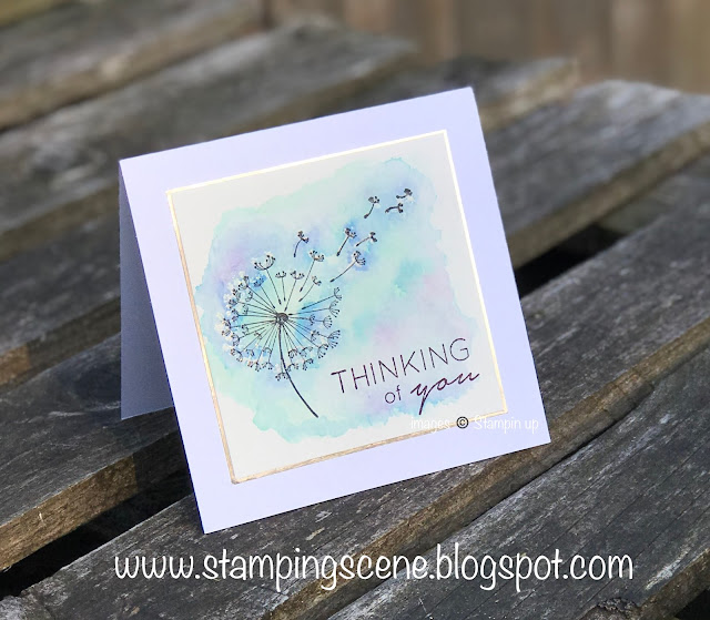 stampin up Dandelion Wishes by Zoe Tant UK