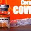 www.seuguara.com.br/perguntas/respostas/vacina/covid-19/coronavírus/
