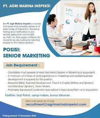 Senior Marketing di PT Agri Marina Inspeksi