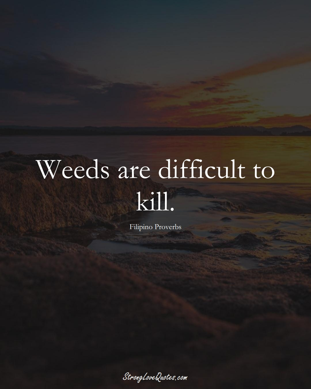 Weeds are difficult to kill. (Filipino Sayings);  #AsianSayings