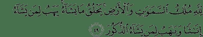 Surat Asy-Syura ayat 49