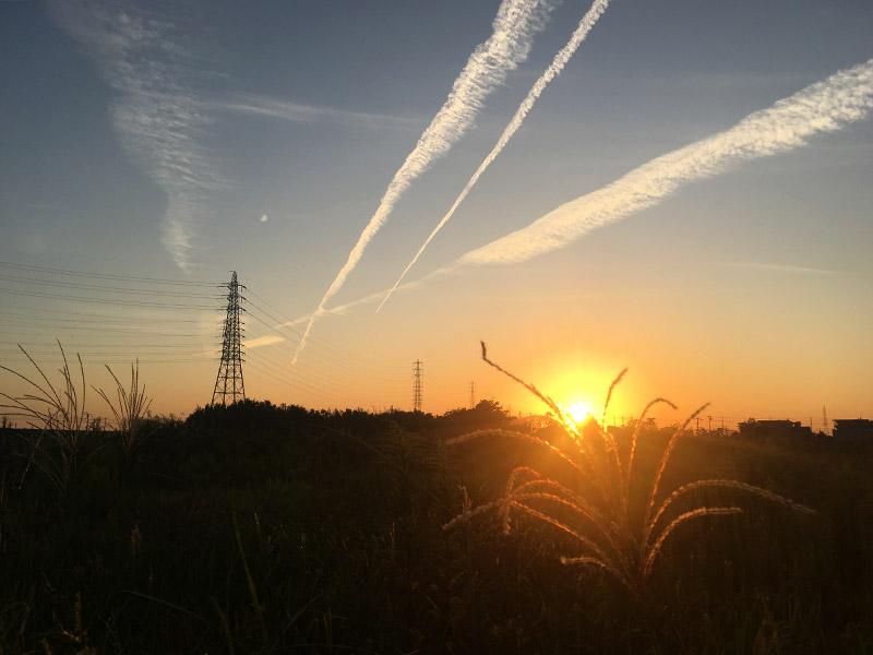 静岡県浜松の東海道新幹線沿いの野原から望む燃えるような夕日