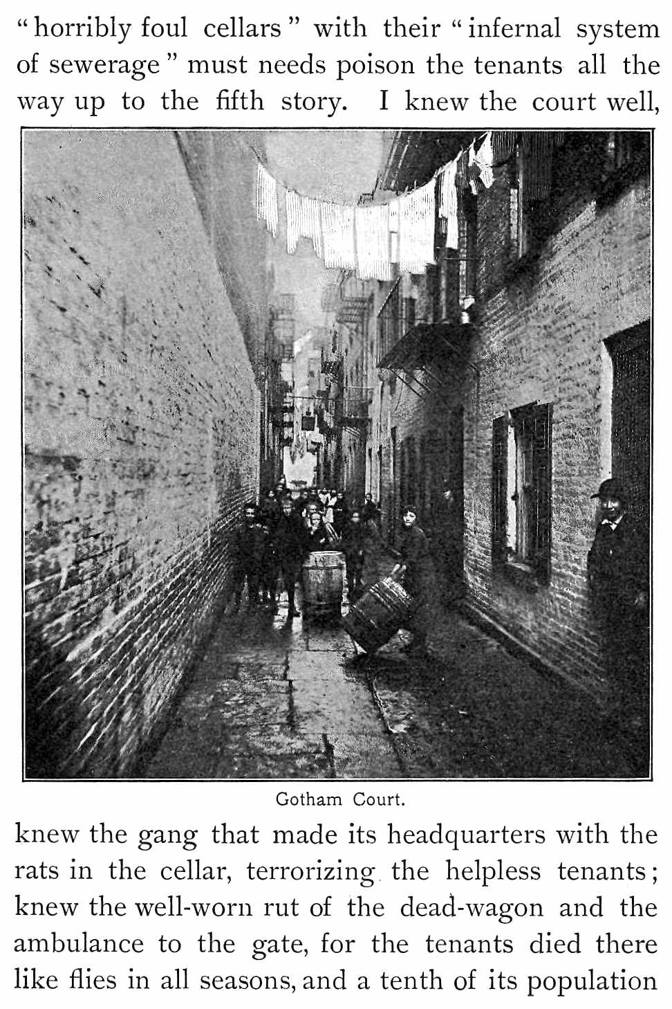 1800s New York Tenements, a photograph and mention of gangs