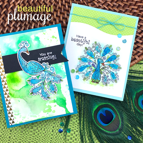 Peacock cards by Jennifer Jackson | Beautiful Plumage Stamp set by Newton's Nook Designs #newtonsnook