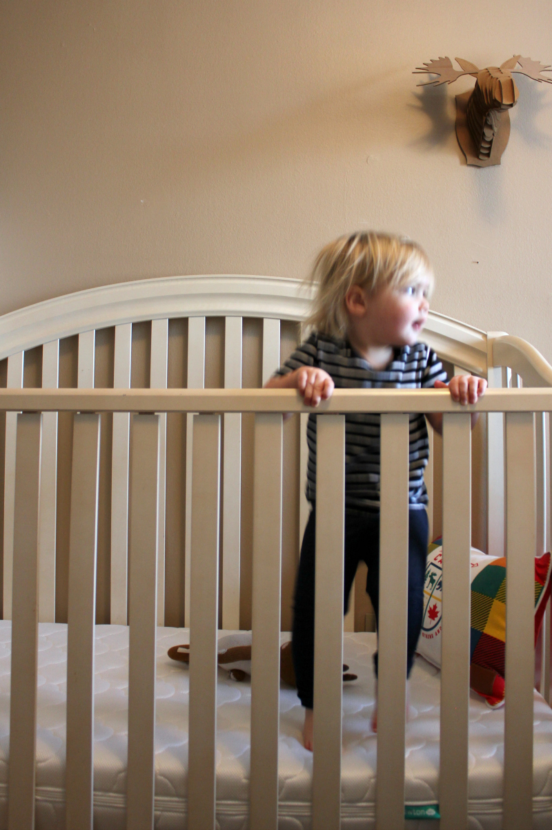 "Strategies to Deal with the ""Terrible Twos"""