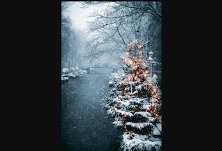 Natale 6