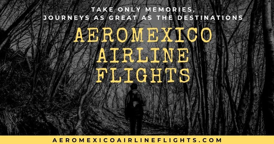 Don't Be panic! Just Hit The Skies At Reasonable Cost with Aeromexico Airlines