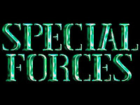 https://collectionchamber.blogspot.co.uk/2017/11/special-forces.html