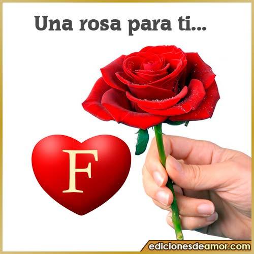 una rosa para ti F