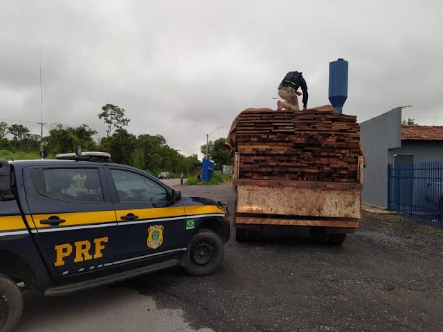 Oeste da Bahia: PRF realiza apreensão de 27 toneladas de madeira serrada em Barreiras