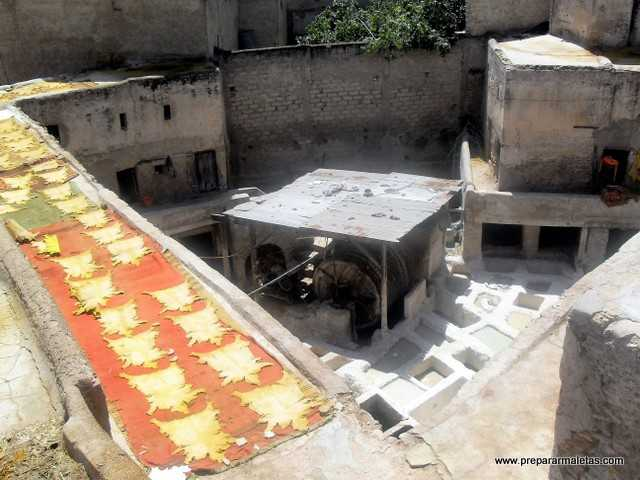 curtidores en la medina de Fez
