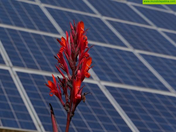 Ecooo y La Palma Renovable abordan la elección de la administración pública palmera ganadora de una instalación de autoconsumo fotovoltaico en La Palma