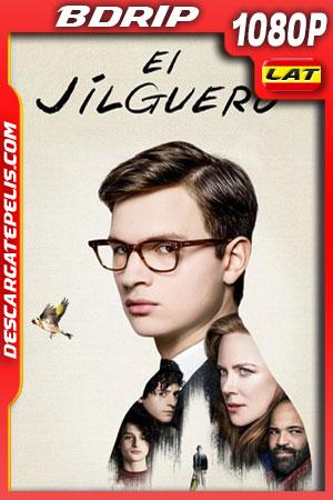 El jilguero (2019) 1080p BDrip Latino – Ingles