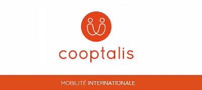 Société COOPTALIS basée en France recherche des concepteurs-développeurs JAVA JEE Fullstak ( H/F)