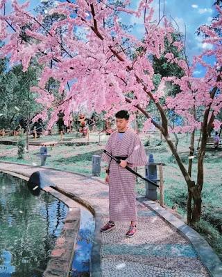 sakura hills karanganyar