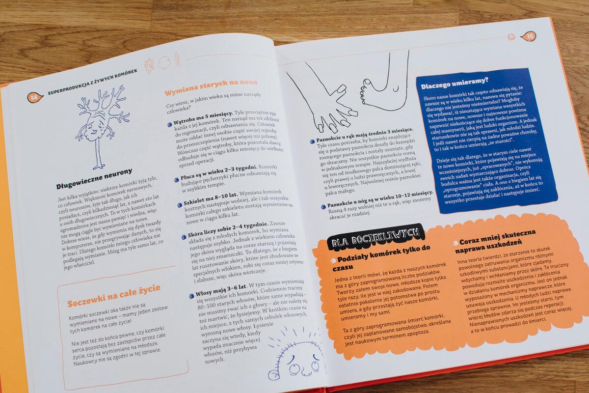 Wnętrze książki człowiek jak to działa edukacyjna książka o ludzkim ciele dla dzieci