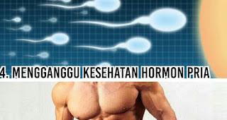 Mengganggu kesehatan hormon pria jika tahu dikonsumsi terlalu banyak