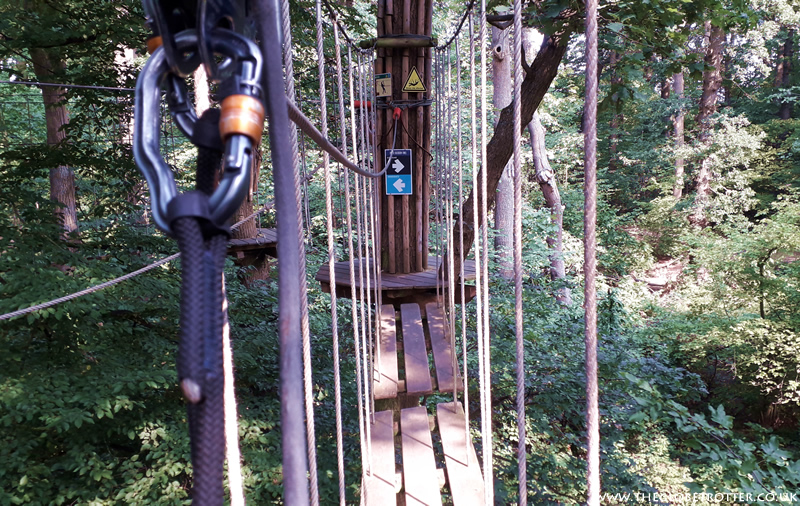 Tree Crossings at Go Ape, Cockfosters