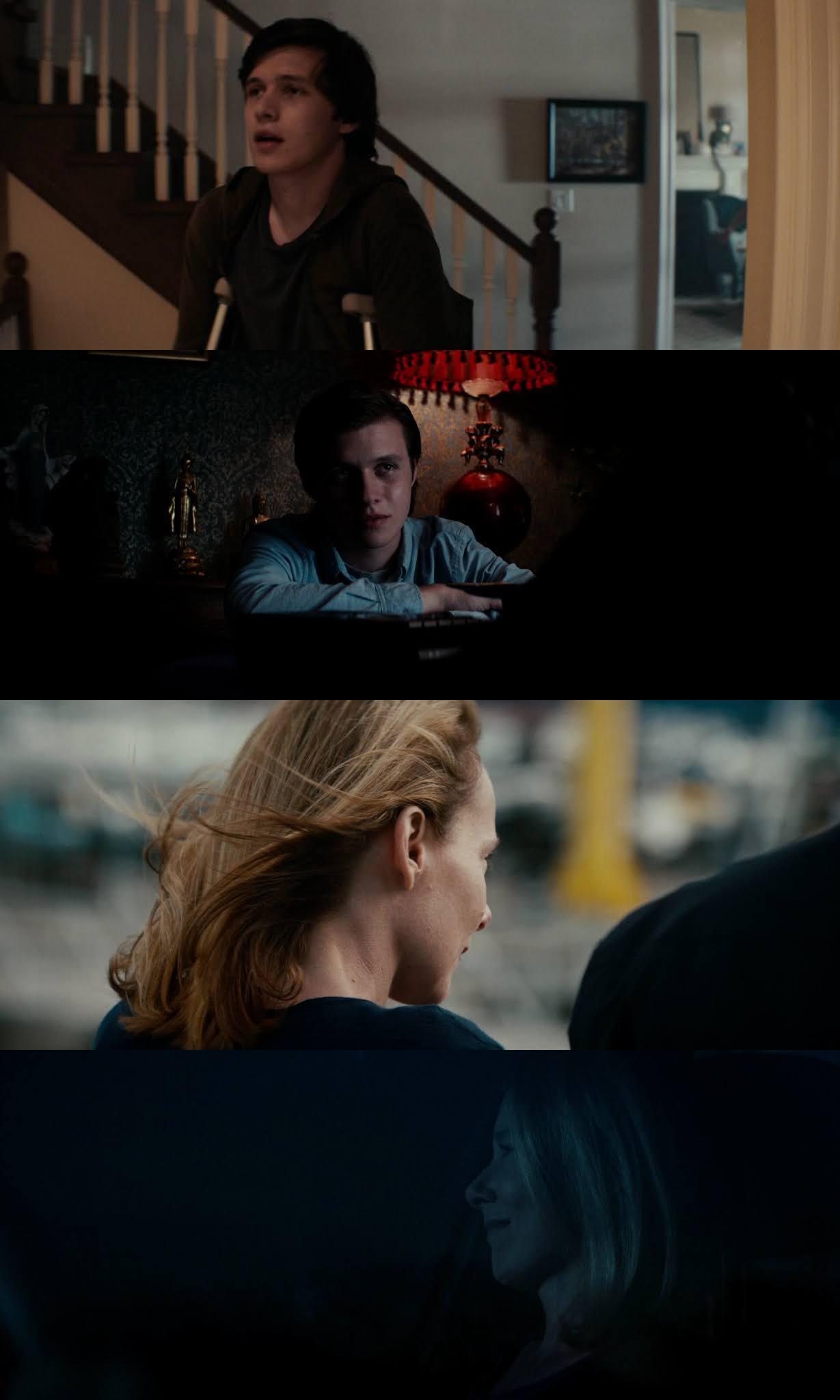 Extraño pero Cierto (2019) HD 720p Latino
