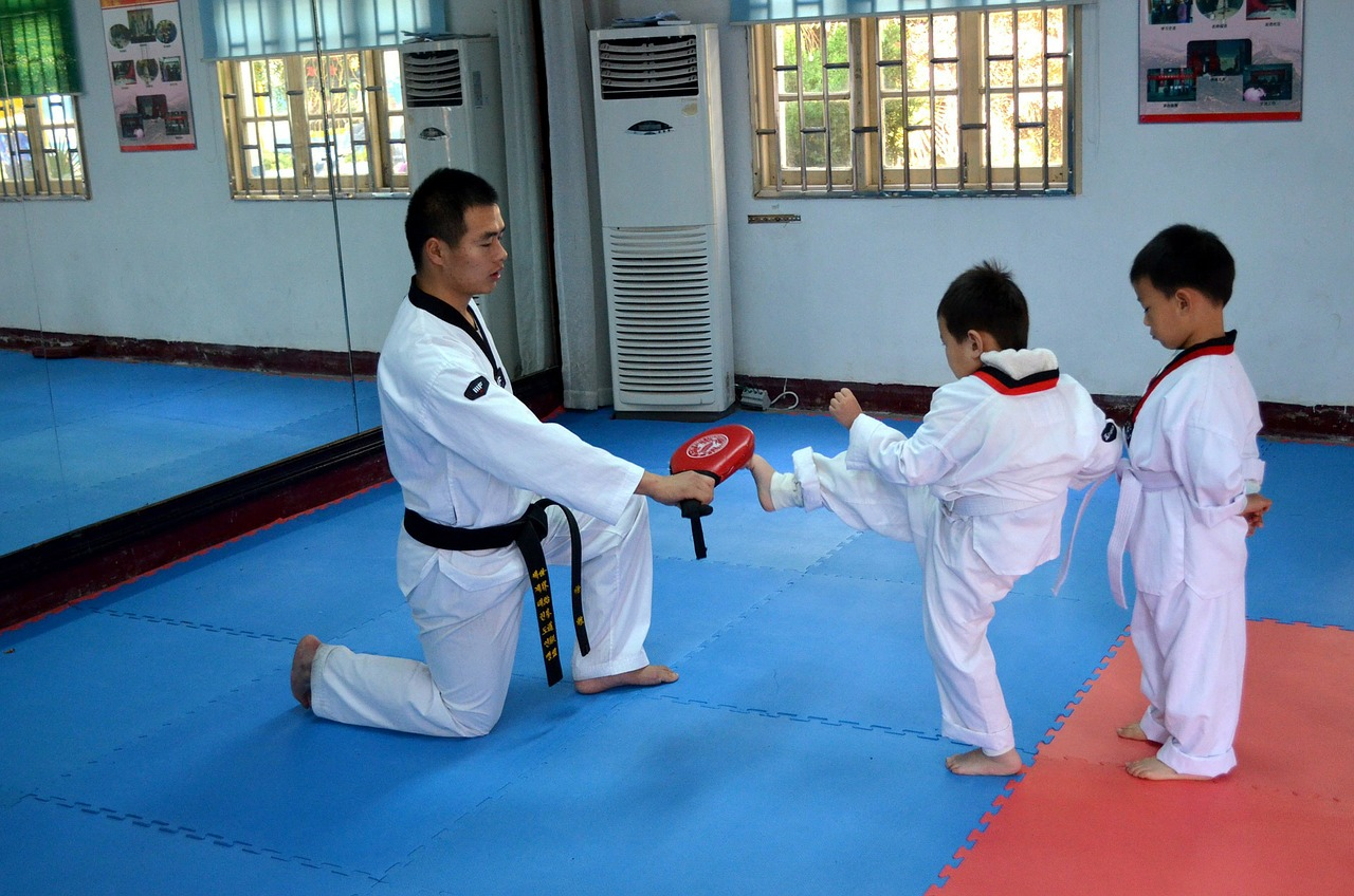 Taekwondo is the best martial art