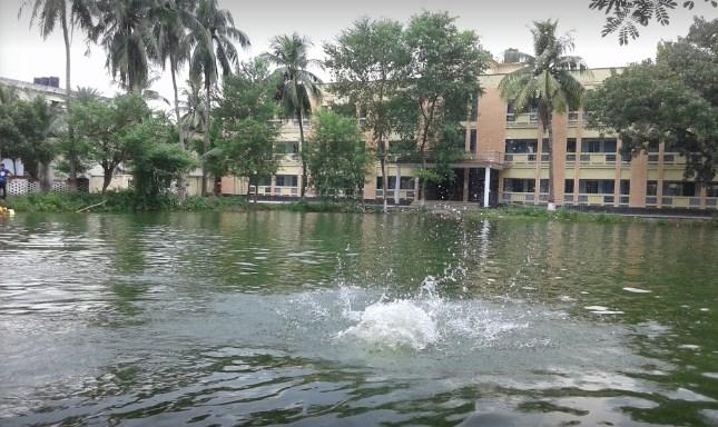 magura govt college college