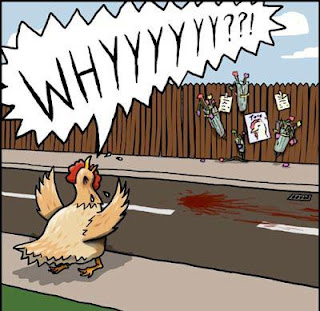 Funny why did the chicken cross the road cartoon picture