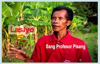 Lasiyo Sang Profesor Pisang