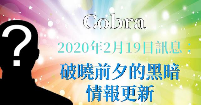[揭密者][柯博拉Cobra] 2020年2月18日:破曉前夕的黑暗-情報更新