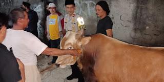 Kapolsek Cengkareng Serahkan Bantuan Satu Ekor Sapi Hewan Qurban