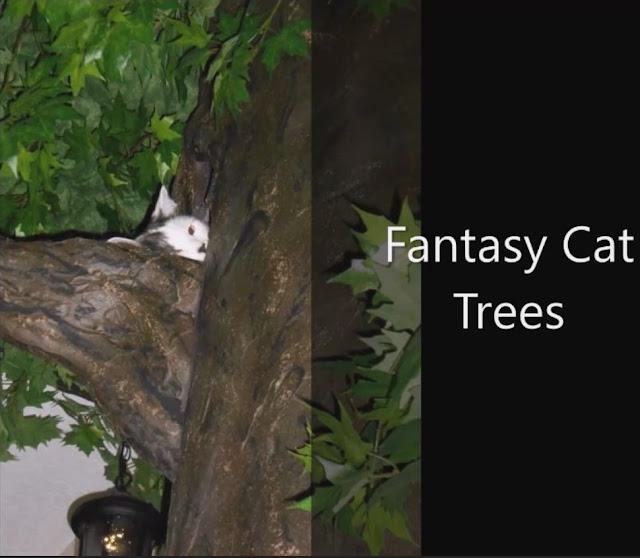 Wood Cat Trees