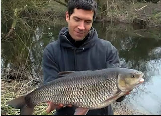 Fishing For Catfish, Europe's Largest Freshwater Fish