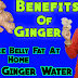 Reduce belly fat with Ginger at home in Hindi: कमर की चर्बी पिघलाएगा यह अदरक का पानी