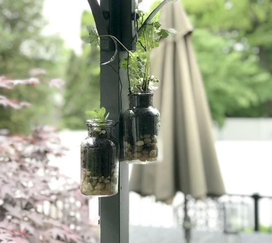 How to Make Hanging Terrarium Planters