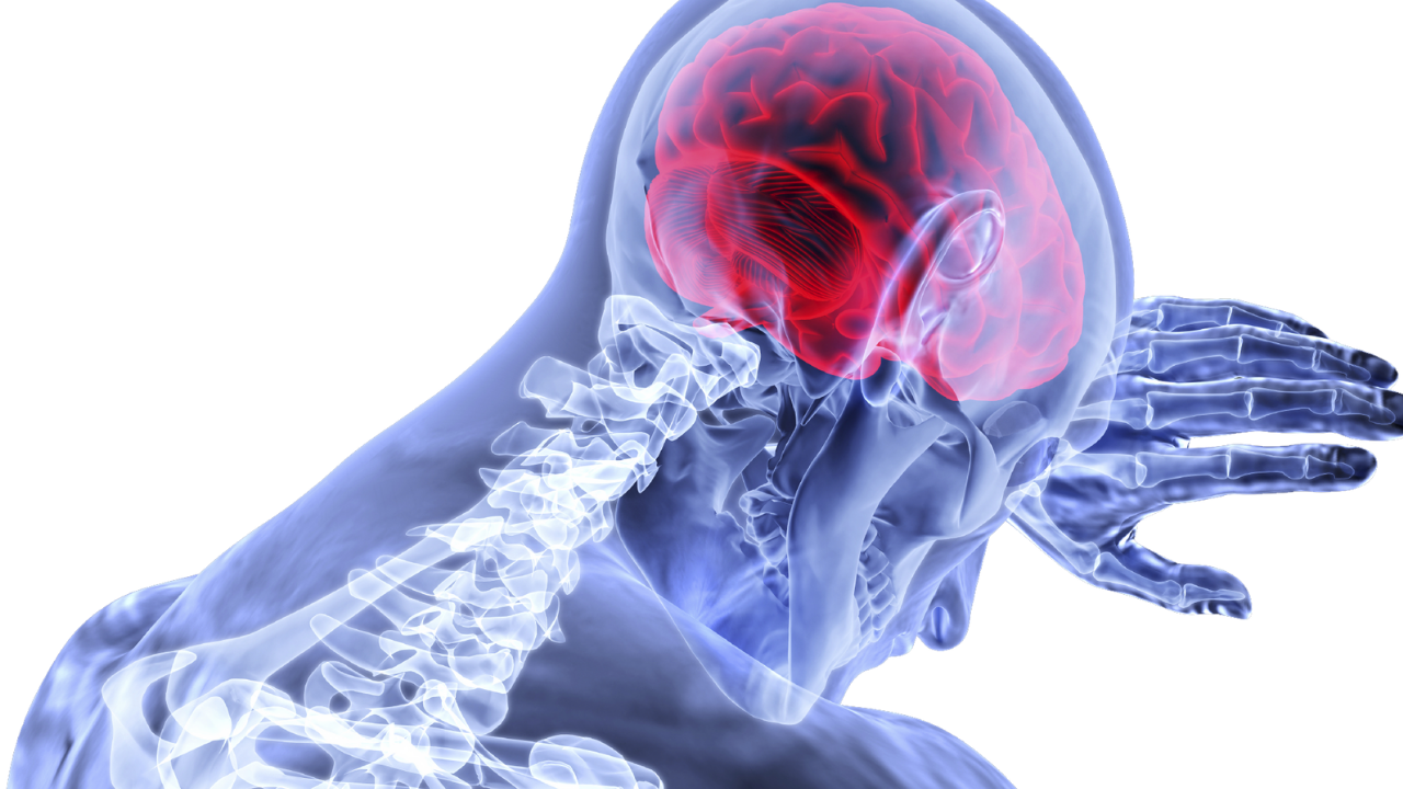 3 Factors That the Vestibular Therapist Should Know About BPPV and Stroke - themanualtherapist.com