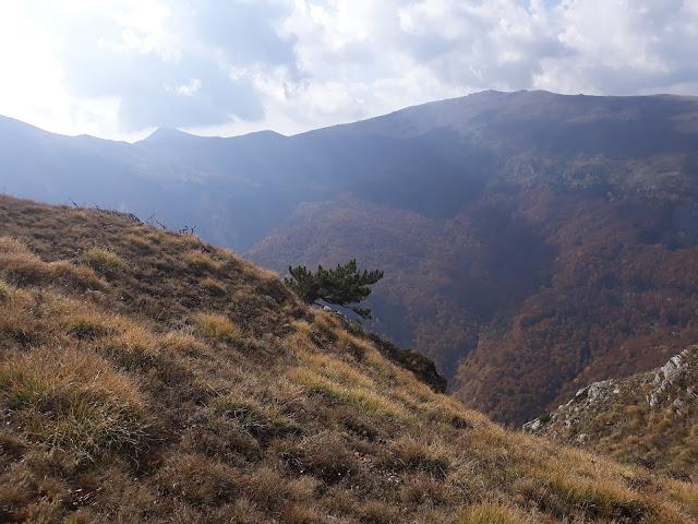 Pogled prema Zelenom bregu Kožuf