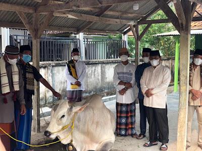 Pemprov Lampung Berkurban 36 Sapi dan 10 Kambing