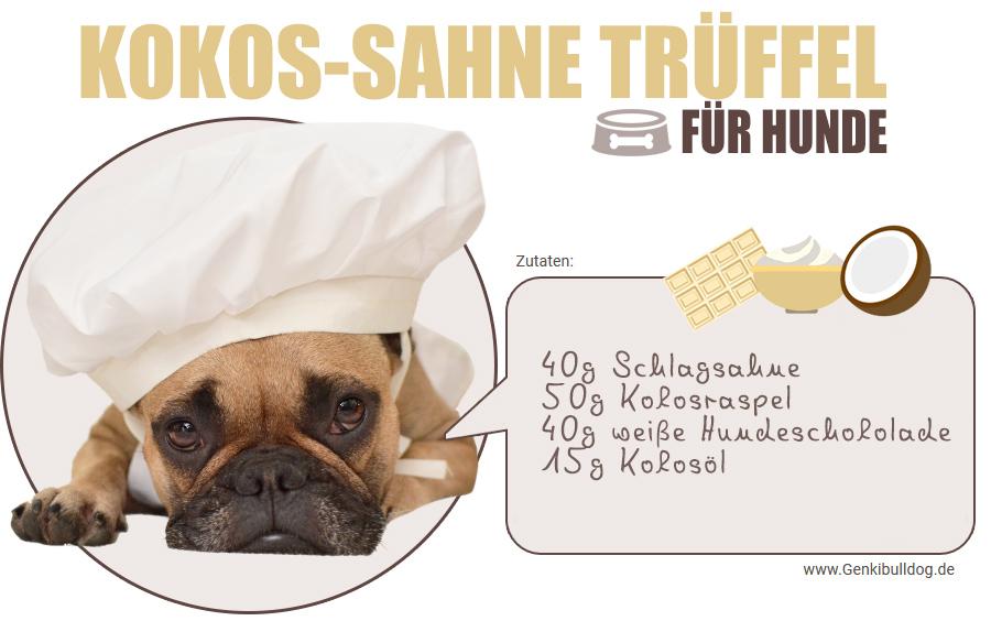 Rezept Kokos-Sahne Trüffel für Hunde Hundepralinen selbst backen