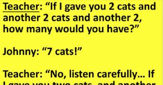 https://www.funnygrannies.com/2020/11/viralfunnyjokes-seven-cats.html?m=1