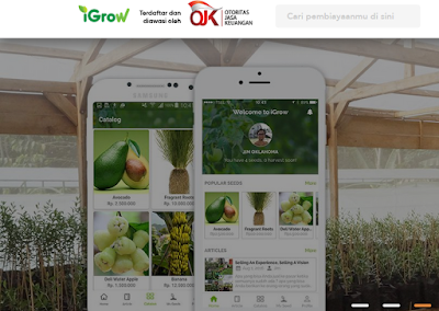 investasi pertanian online